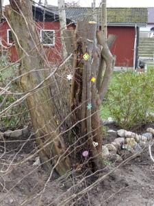 perlepladetræ